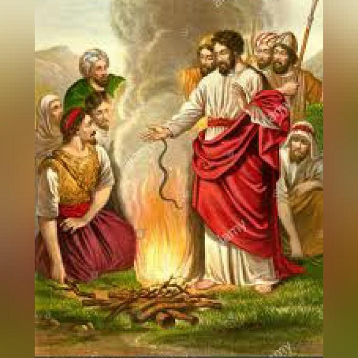 BIBLE ALIVE 15: Labileperception
